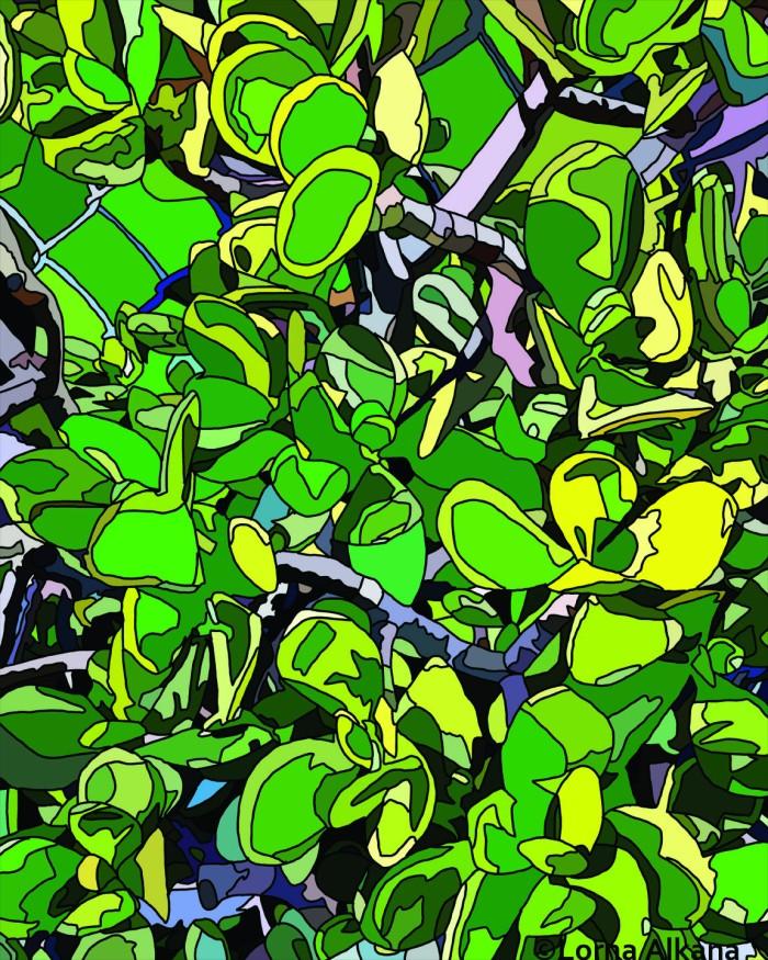 plants in la 16x20 for web