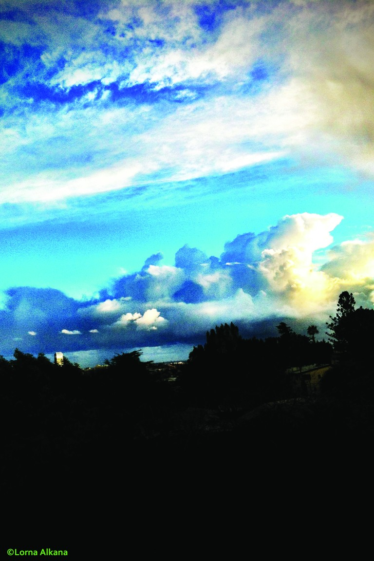 trees and houses in front of clouds and the sky 20x30 for web photo sky