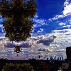 Something in the Sky in LA