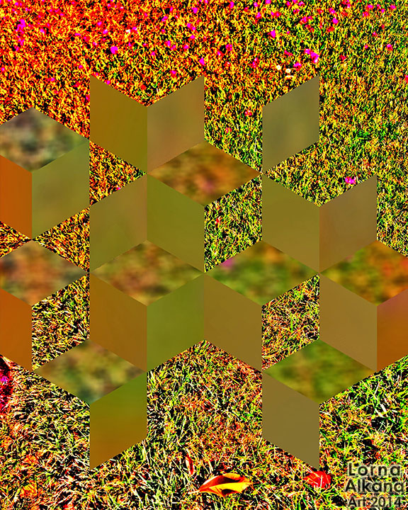 blurry diamonds in the grass 8x10 lorna alkana w