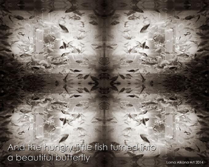 dark fish roar 8x10 w