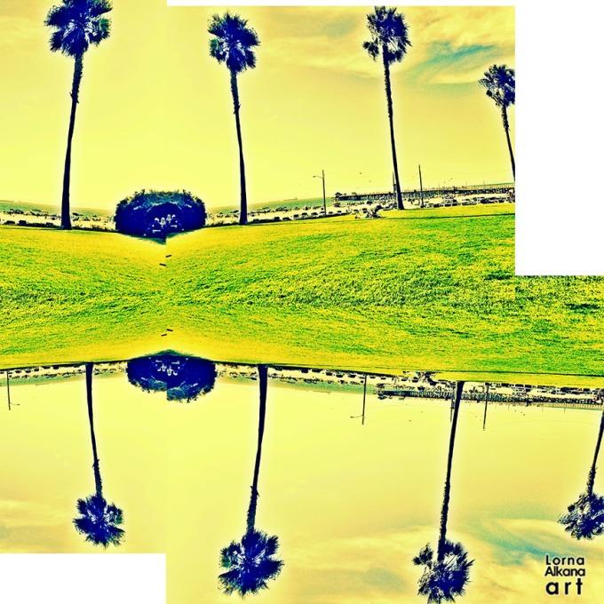 palm trees sb 12x12 w
