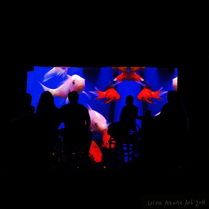 travistines 12x12 w w blue fish