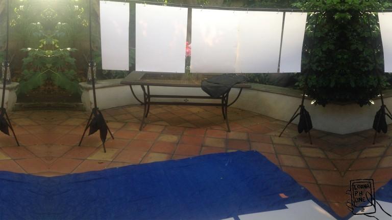 canvas set plagturns1 lornaphone w